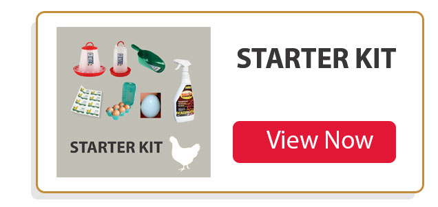keeping chickens starter kit