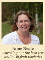 Anne Neale - Searching out the best tree and bush fruit varieties