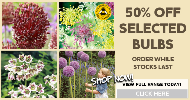 50 percent off selected bulbs