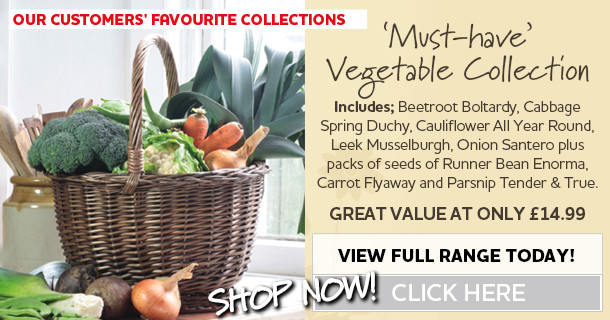 vegetable plants collection