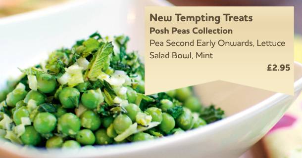 Posh Peas Collection