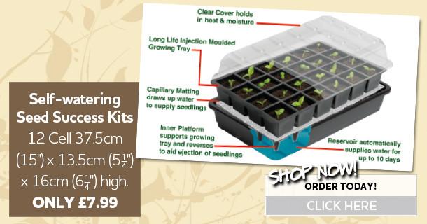 self watering seed kits