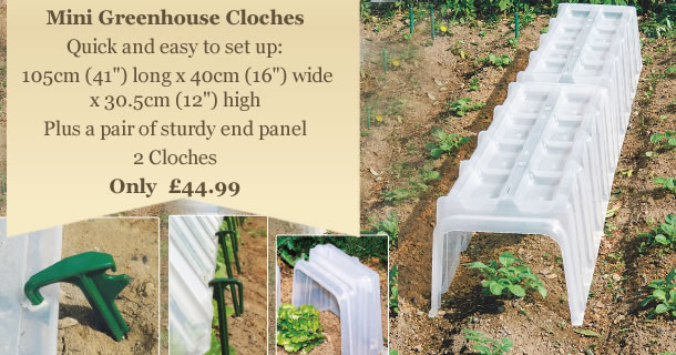 Mini Greenhouse Cloches - Click for details