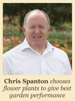 Chris Spanton - Chooses flower plants to give best garden performance