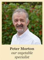 Peter Morton - Vegetable Specialist