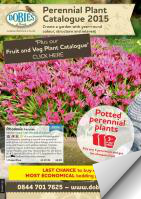 Dobies Perennial Flowers 2015 Catalogue