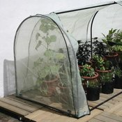 Protecting Your Plants