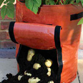 Vegetable Growing Accessories