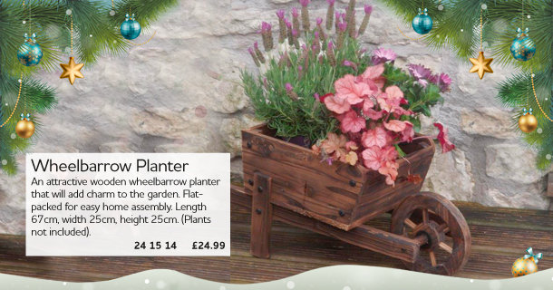 Cute Wheelbarrow Planter - click for details
