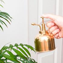 Brass Plant Mister