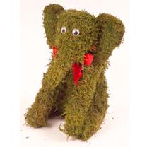 Moss Animal - Elephant