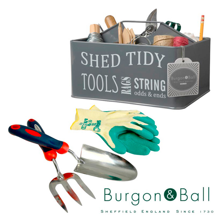 Gift Set - Shed Tidy