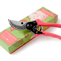 Rosa Chinensis Gifts - Trowel & Fork, Secateurs, Gloves