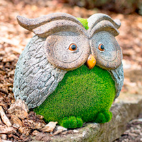 Flocked Owl