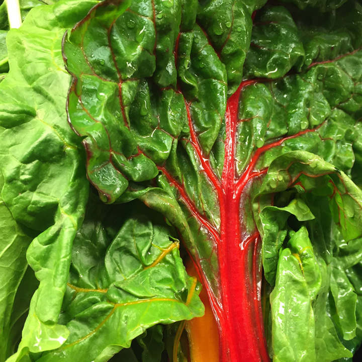 Spinach Beet Seeds - Rhubarb Chard