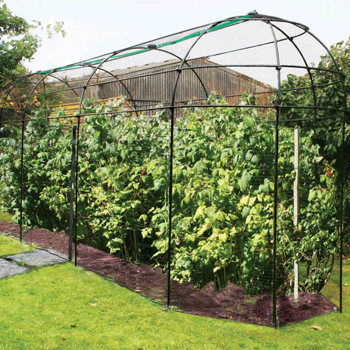 Long Narrow Fruit Cage with Zip Net