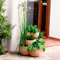 Terracotta Floor Plant Pot