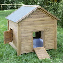 Small Chicken Coop