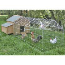 Chicken Coop, Nesting Box & Outdoor Pen