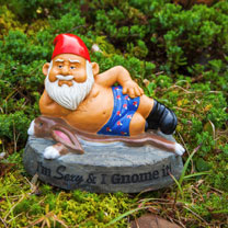 Gnome - I'm Sexy and I Gnome It
