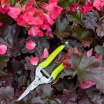 FloraBrite Bypass Secateurs & Harvesting Snip - Yellow