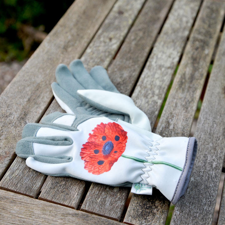 RHS Gloves - Chelsea RHS Collection