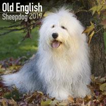 Old English Sheepdog Calendar