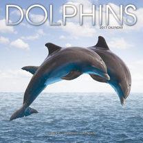 Wall Calendar Dolphins