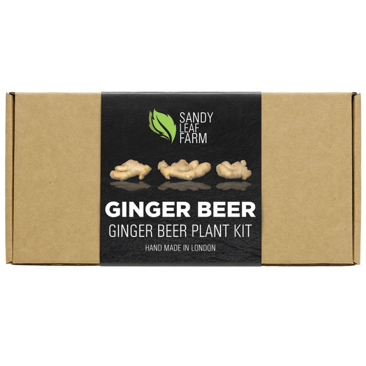 Home Brew - Ginger Beer Twin Pack