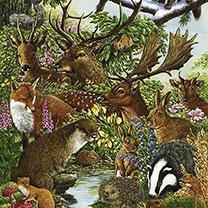 Jigsaw - Wild Woodland