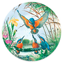 Circular Jigsaw - Kingfishers