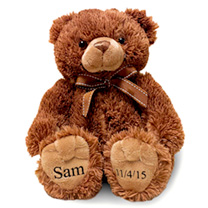Personalised Teddy