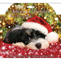 Advent Calendar - Dog