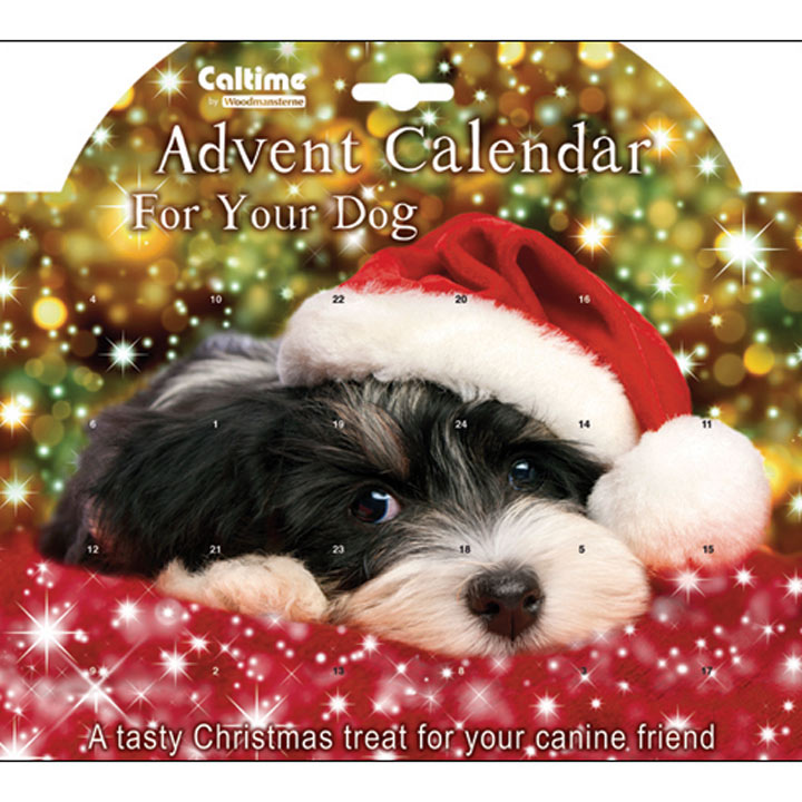 Advent Calendar - Dog