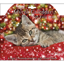 Advent Calendar - Cat