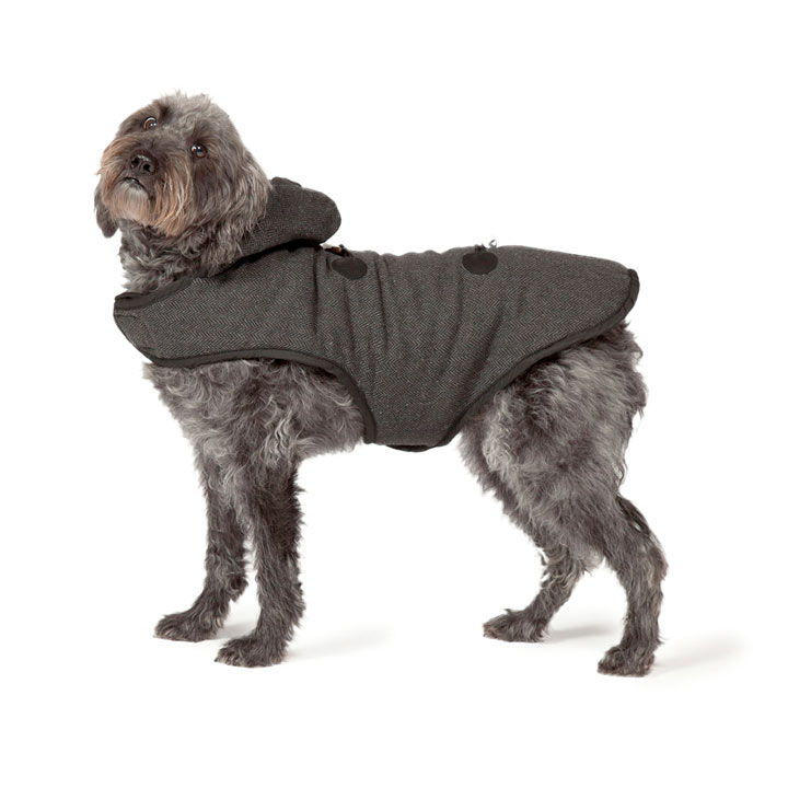 Duffle Coat Dog Coat
