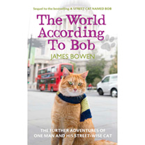 Bob The Cat Book