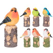 Bird on Tree Trunk