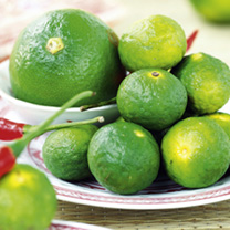 Citrus Tree - Kaffir Lime