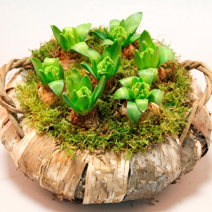 Hyacinth Wreath - White