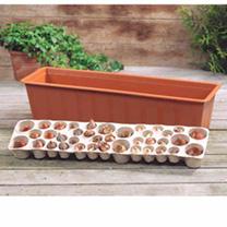 Plant-O-Tray Balcony Preplanted Bulbs - Mixed