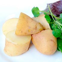 Seed Potatoes - Sarpo Kifli