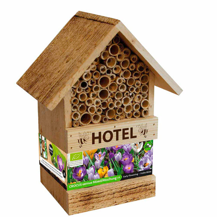 Bee Hotel and Crocus Bulbs