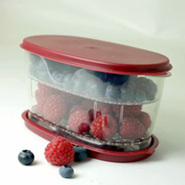 Berry Keeper x 1