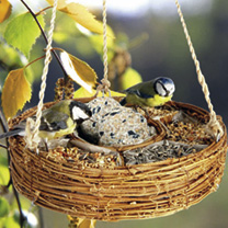 Hanging Circle Bird Feeder