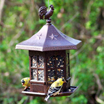 Cupola Bird Feeder