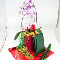 Flower Gift Wrap Kit