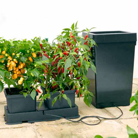 Easy 2 Grow Irrigation Kit