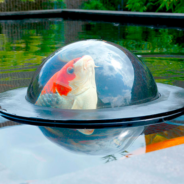 Floating fish dome m garden features garden for Garden pool accessories