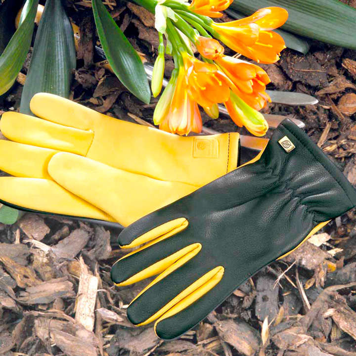 Dry Touch Gloves - Mens